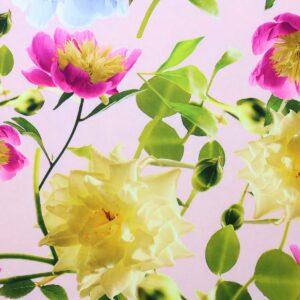 Tkanina Drukowana Sukienkowa Kwiaty Tło Różowe